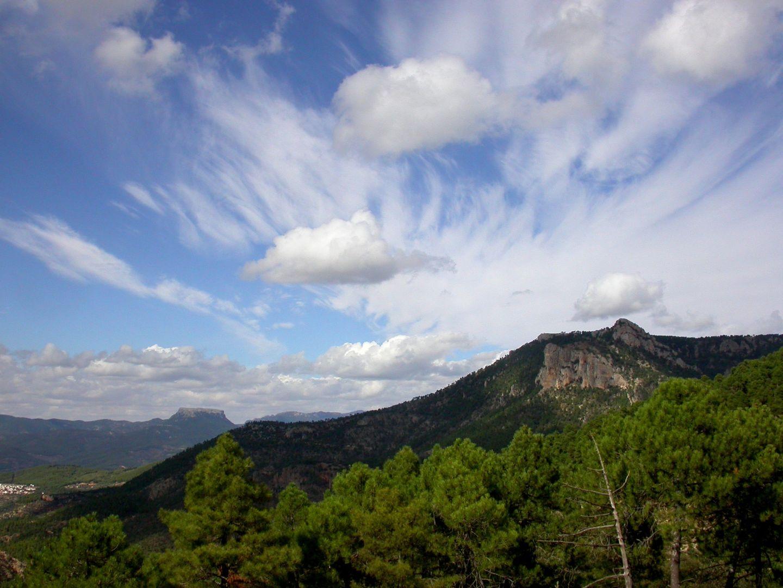 Anuncios en Murcia
